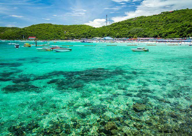 Đảo San hô  Pattaya, Thái Lan